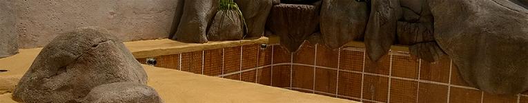 Piscinas ibericapool tipo de piscinas - Piscina de arena de hormigon gunitado ...